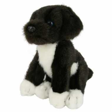 Knuffel Friese Stabij puppy