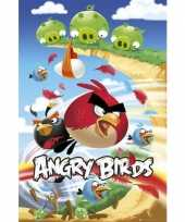 Grote posters angry birds knuffel