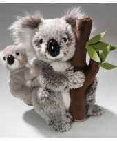 Knuffel koala baby boomstam